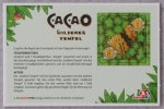 Cacao: The Golden Temple